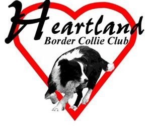 Heartland BC Club Hosts Agility Trial