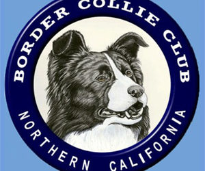 Border Collie Club of Northern California Specialty Show